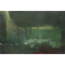 Ellen Phelan - Light in Far Field