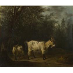 Adriaen van de Velde - A Goat and a Kid